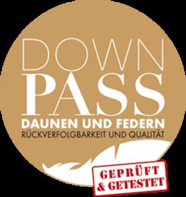 logo_downpass_c